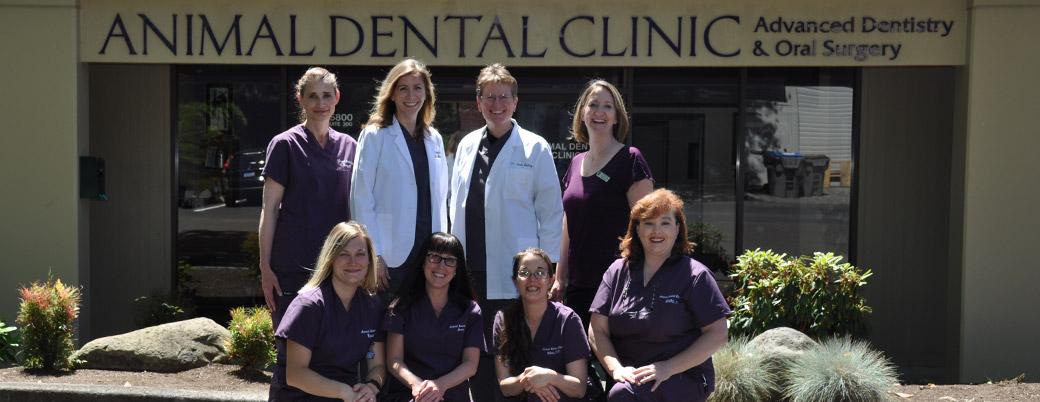 Preferred Veterinary Dental Care