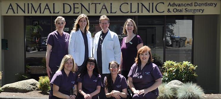 Welcome to Animal Dental Clinic, Serving Lake Oswego and Portland, Oregon!