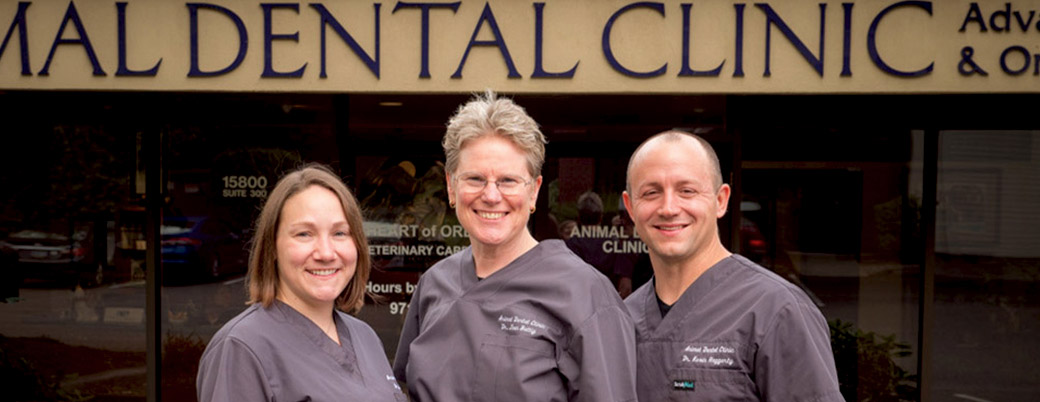 Meet Our Veterinarians | Animal Dental Clinic | Pet Dentist Portland, OR