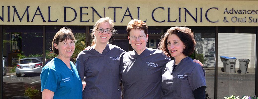 Preferred Veterinary Dental Care