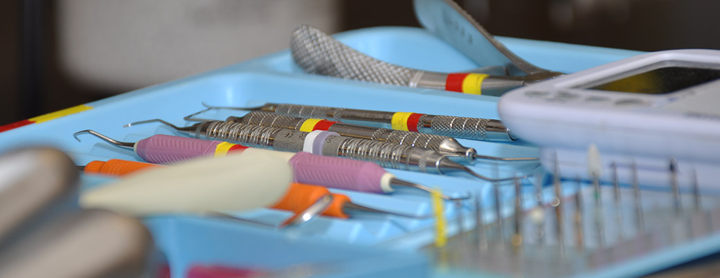 Professonal Veterinary Dental Cleaning proceedures